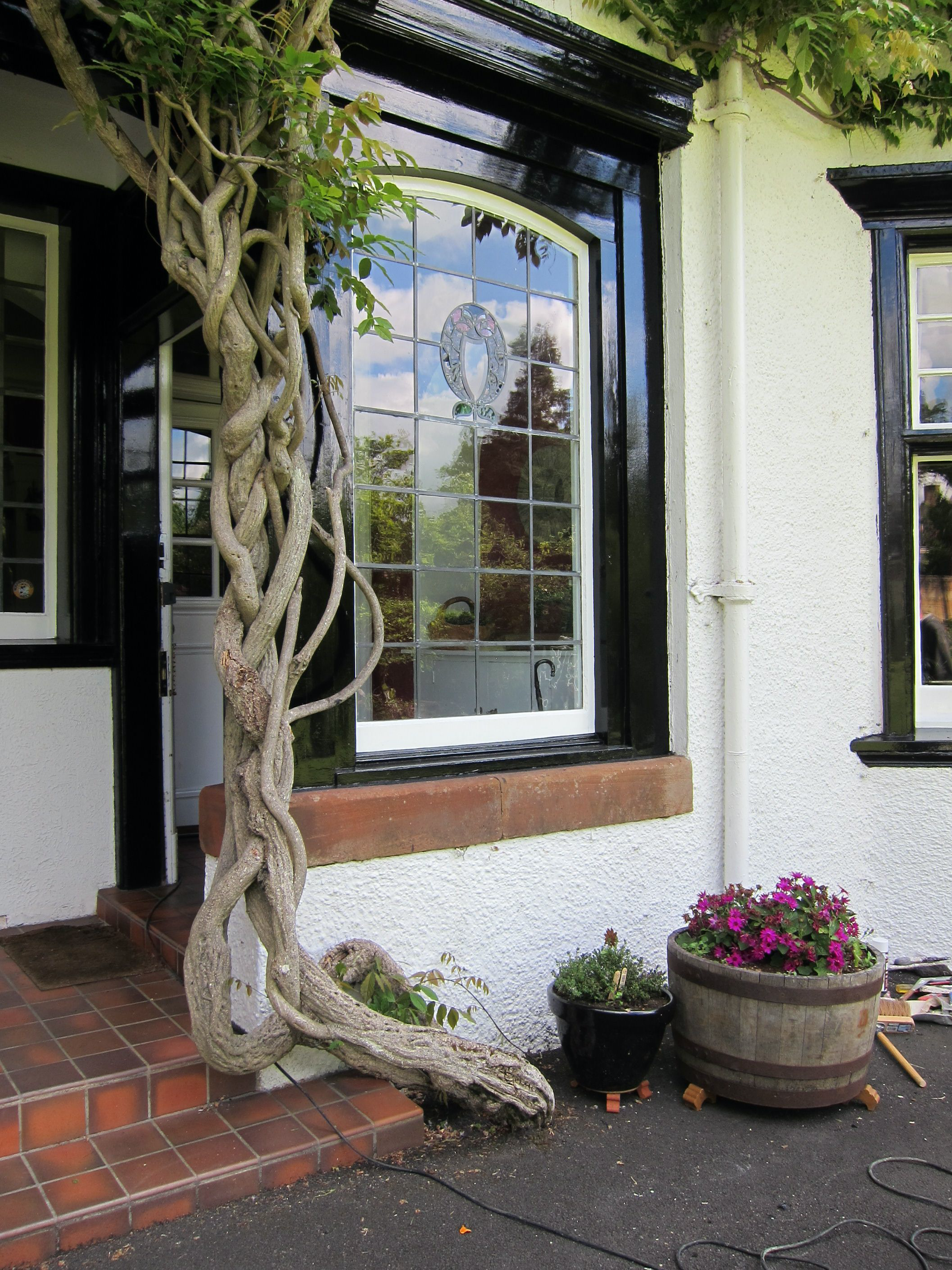 Window with black timber surround